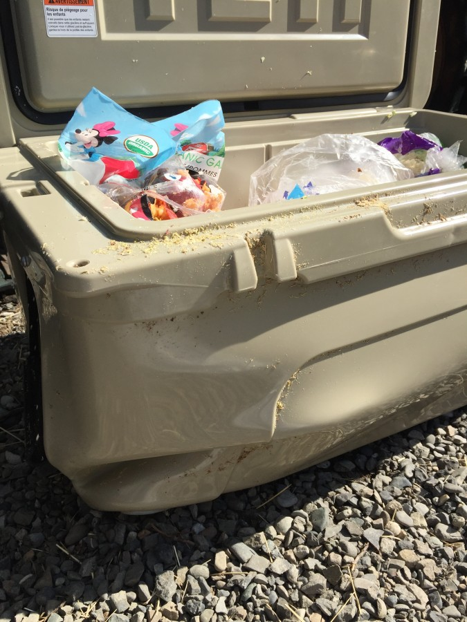 Photo Credit: Lindall Kidd. One of our Yeti coolers was damaged beyond use, and the food inside looked like it had been through a Cuisinart!