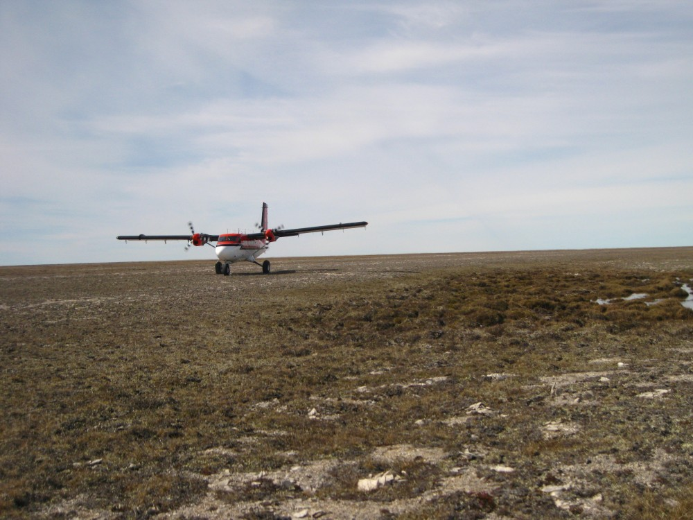 Because the weather is very unpredictable in the Arctic, and bad weather can cancel flight plans for many days in a row, it's always a special delight to see your plane land on time. Here the Twin Otter comes in for a graceful landing on the gravel ridge that passes for a tundra airstrip.