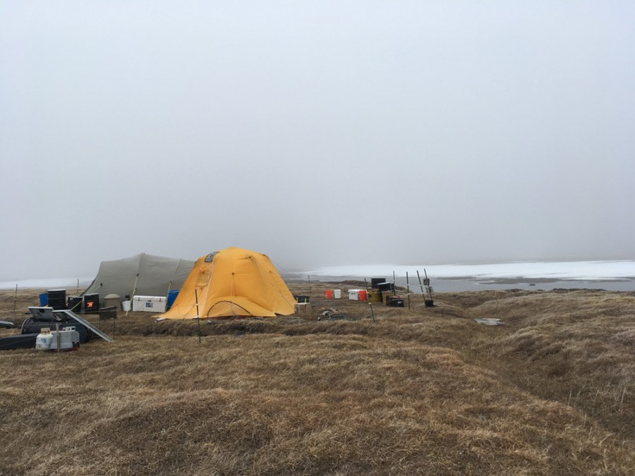 A typical view of camp with fog obscuring the mountains to the south. Temperatures were below freezing and wind blowing near 20 MPH. Photo: Metta McGarvey
