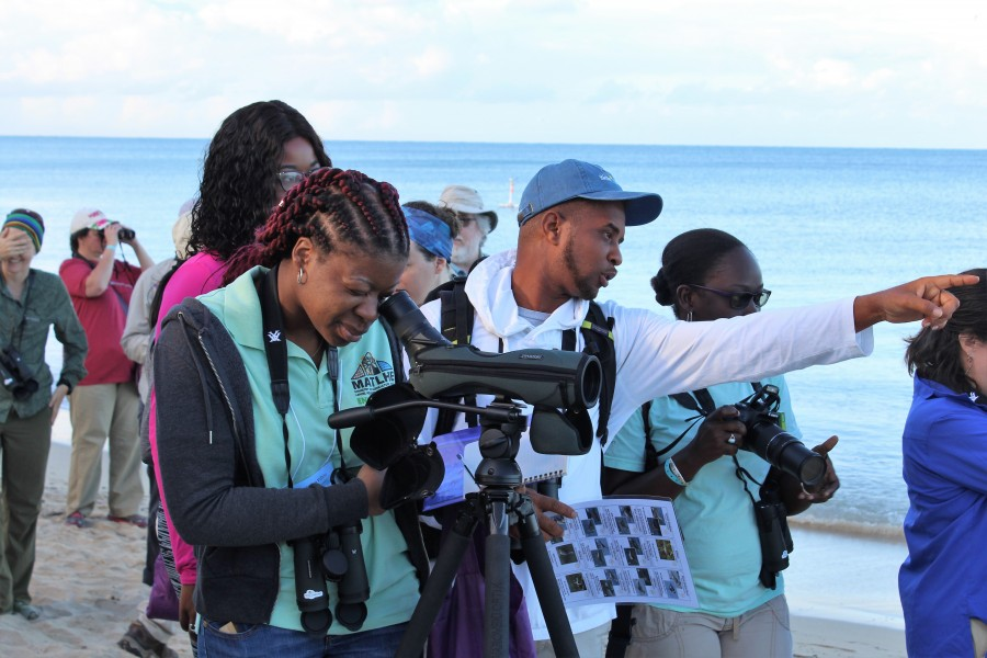 Ajhermae White, Machel Sulton, and Natalya Lawrence work on bird identification at Combate Beach (Monica Iglecia)