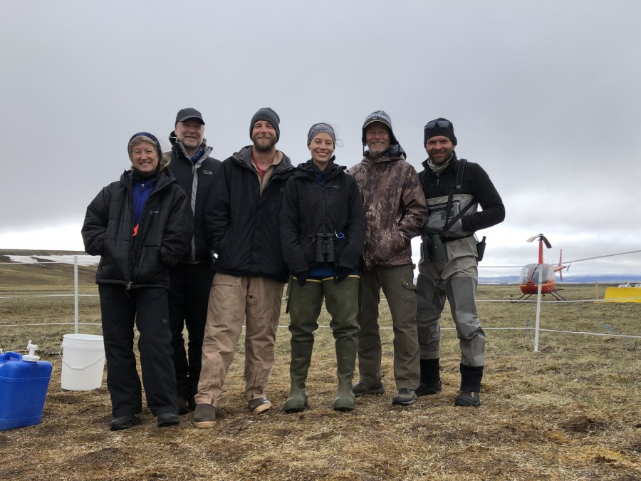 All-star shorebird survey crew. From left: Metta McGarvey, Stephen Brown, Nick Myers (pilot), Lindall Kidd, Rick Lanctot, Shiloh Schulte, R44 helicopter.