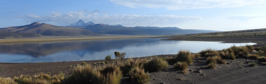 HEADER_Lagoon at National Park Sajama