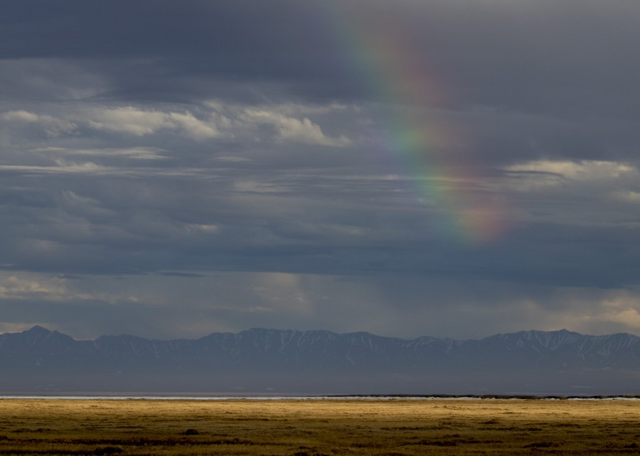 Evening light after a rainstorm north of the Brooks Range in the Arctic National Wildlife Refuge.  Shiloh Schulte