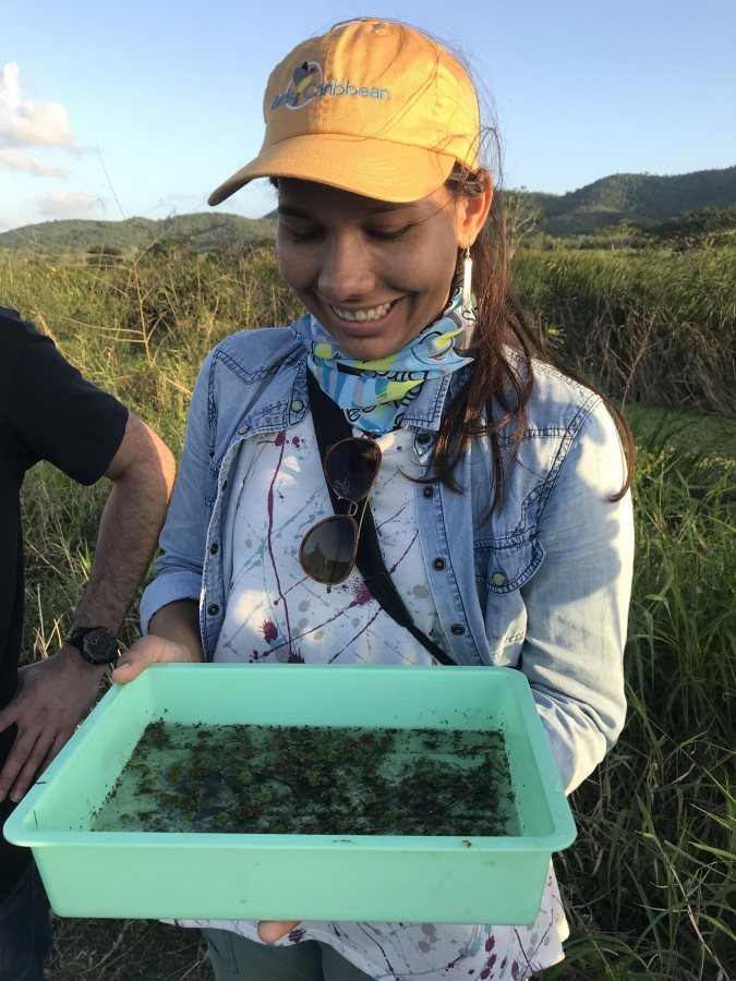 Nahira Arocho shares the invertebrates collected from the wetland at Laguna Cartagena (Monica Iglecia)