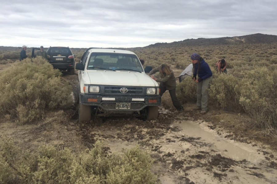 Volunteers try to free the vehicle that got bogged down during their field trip in Rio Negro, Patagonia Argentina. ©COA Tintica