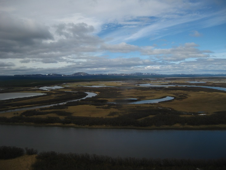 The Yukon Delta is a dramatic landscape of rivers, tundra, and hills, and we are seeing striking panoramas like this every day as we travel from plot to plot.