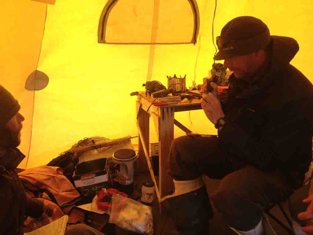 Roy bands a bird in the office tent while Scott records the information. This was a rare occurrence when we had a nest so close to camp that we could actually catch the bird and bring it into the tent to band. Normally we have to collect all of the data out in the field, sitting on the tundra.