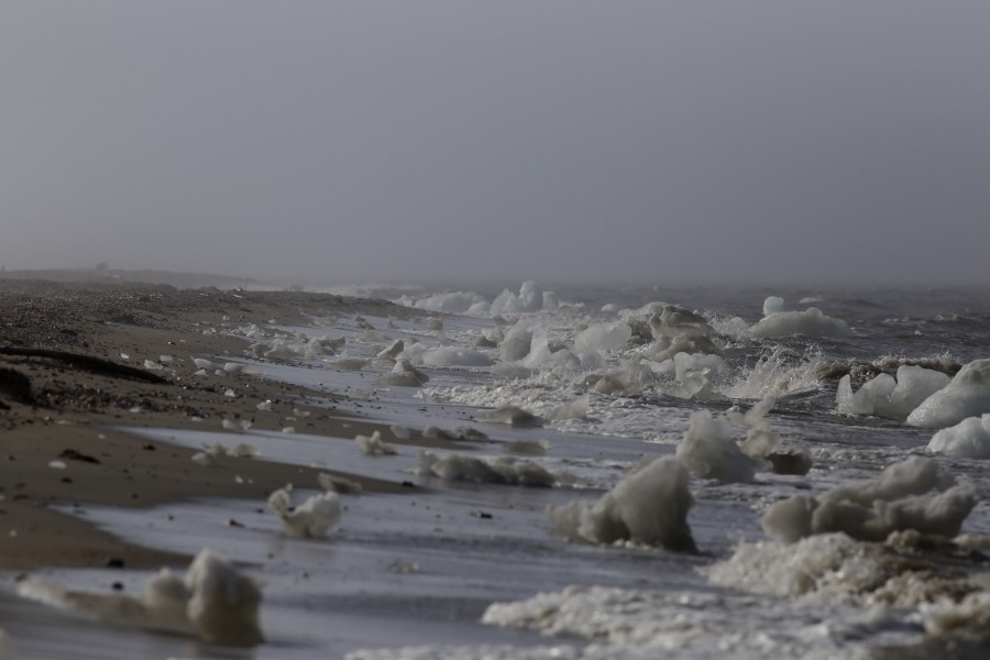 The Beaufort Sea ice had already significantly thawed by the time of our arrival in early June. An early ice breakup often results in earlier sightings of Polar Bears on the mainland, and members of our crew saw fresh foot prints along the beach on our visit on the 4th of July.