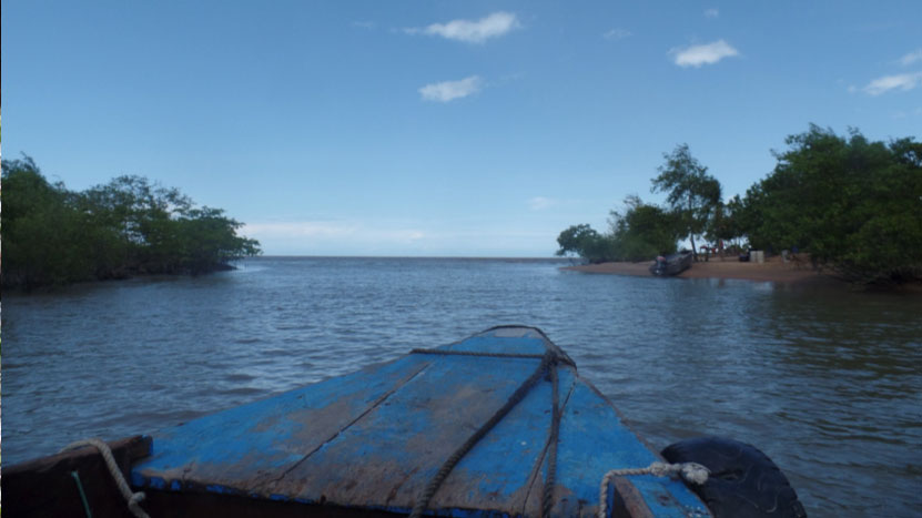 Warappa Creek mouth and basecamp for remainder of the workshop in Suriname.