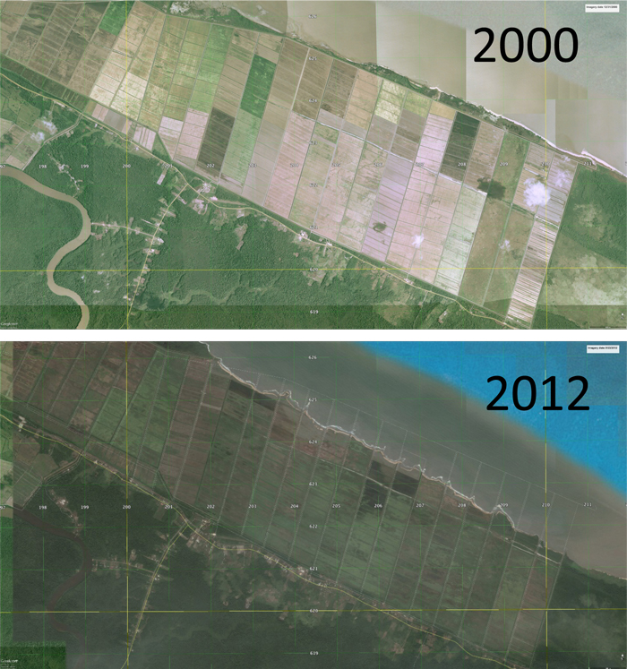 The Mana rice fields in 2000 and 2012.