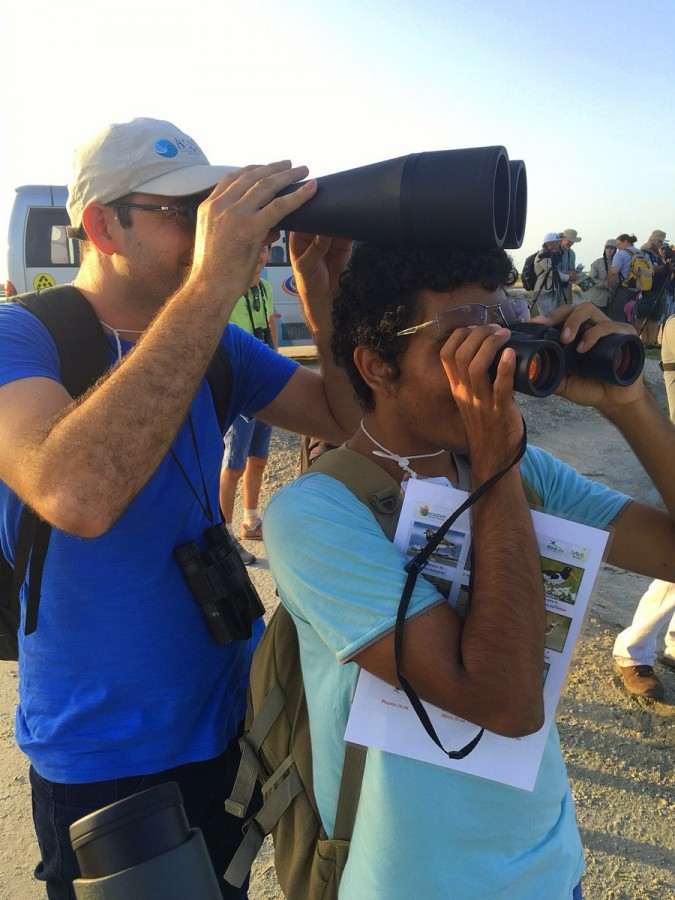 Cooperative human tripod: Students learning to identify shorebirds at our workshop at Icapui.  Who says learning can't be fun.